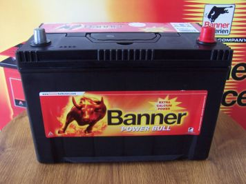Banner Power Bull 95 Ah ASIA R+